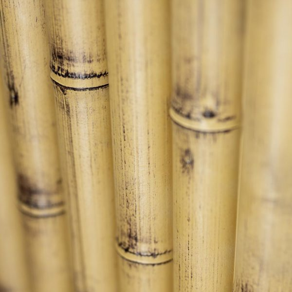 Bamboo Panel Texture - OneThatch