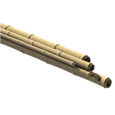 Poste de bambú de color joven - ONETHATCH