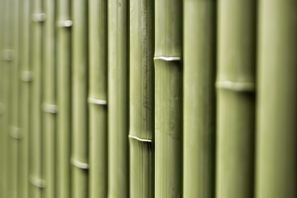 green color young bamboo slat panel - OneThatch